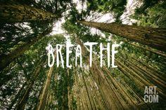 Breathe Art Print at Art.com