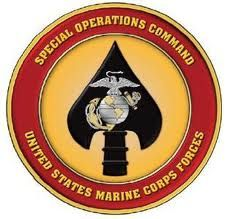 The United States Marine Corps is organized within the Department of the Navy, which is led by the Secretary of the Navy (SECNAV). The most senior Marine officer is the Commandant of the Marine Corps, responsible for organizing, recruiting,… Marsoc Marines, Us Marines, Military Units, Military Life, Military Gear, Military Weapons, Special Ops, Special Forces, Marine Raiders