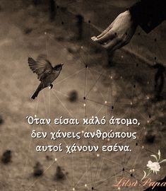 Me Quotes, Georgia, Pictures, Photos, Dj, Greek, Movies, Movie Posters, Life