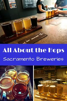 Sacramento breweries have a strong place in history and a growing presence in the craft brewing world. Where to go to find the best beers in Sacramento. And some great spots to eat too.