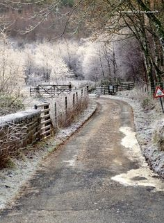 SEASONAL – WINTER – a new-fallen snow appears so peaceful, but still gives me the chills during a frosty morning in scotland, photo via nicole. Winter Szenen, Winter Magic, Winter Road, Winter Walk, Beautiful World, Beautiful Places, Snow Scenes, Winter Beauty, Belle Photo