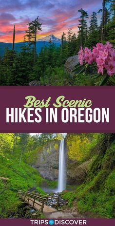 These 8 Scenic Hikes in Oregon Are a Nature Lover's Paradise - - There are so many varied landscapes, amazing recreation areas, and scenic views in all corners of this Pacific Northwest state. Hiking Near Portland Oregon, Oregon Road Trip, Oregon Trail, Oregon Coast, Travel Portland, Oregon Camping, Visit Portland, Road Trips, Mall Of America