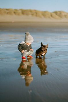This is going to be my kid and my dog some day. Frenchie!!! Might be a corgi in there too.