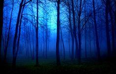 Sleepy Hollow... by Partha Ghosh on 500px