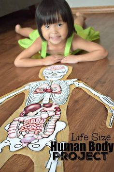 This FREE Human Body Project is COLOSSAL fun for teaching prek kindergarten first grade grade grade grade and grade students about my body. Human Body Model, Human Body Unit, Human Body Systems, Human Body Lesson, The Human Body, Human Body Parts, Science Projects For Kids, Science Activities For Kids, Science For Kids