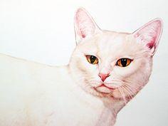 Vintage Cat Illustration Print - Manx Illustrated Color Poster