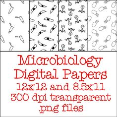 Microbiology essay payment