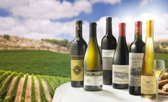 Decoding Israeli Wine - Wine Enthusiast Magazine - September 2011