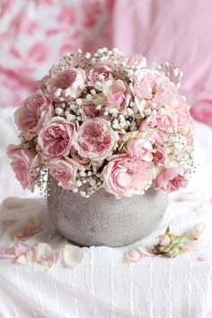 Résultats Google Recherche d'images correspondant à http://rosesetc.files.wordpress.com/2013/06/roses-by-claire-bouquet-lovely-gruss-2.jpg%3...