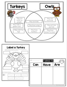Have fun learning about turkeys with these fun activities!    Includes: Venn diagram, can-have-are chart, writing page, emergent reader, labeling,  and a short info passage.