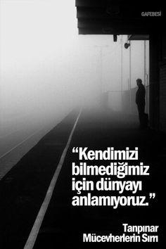 Kendimizi bilmediğimiz için dünyayı anlamıyoruz. - Ahmet Hamdi Tanpınar / Mücevherlerin Sırrı