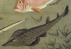 27_群魚図(蛸)-0005