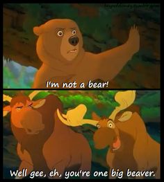 "Brother bear- This movie is full of awesome puns/ quotes, and I love this line! ""Well gee, eh, you're one big beaver."" Notice how the other moose is looking at him like ""really friend? Disney Memes, Disney Quotes, Funny Disney, Disney Facts, Zootopia, Disney And Dreamworks, Disney Pixar, Walt Disney, Disney Nerd"