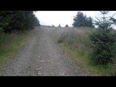 See Wales by cycling  Mit dem Fahrrad unterwegs  Edwyn Ap Harri
