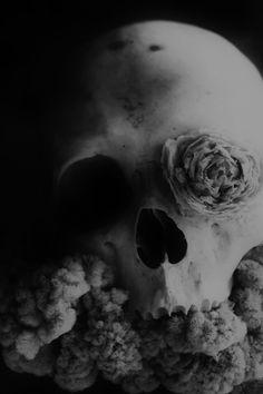 occult   Tumblr
