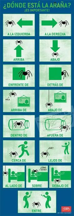 Direction Words Skinny Poster Spanish - - It's very important to know where the spider is! Show students the meaning of direction words in a memorable way with this fun poster. 13 x 38 inches, laminated to last forever. Learn Spanish Free, Learning Spanish For Kids, Learn To Speak Spanish, Learn Spanish Online, Spanish Language Learning, Teaching Spanish, Kids Learning, Learning Activities, Teaching Resources