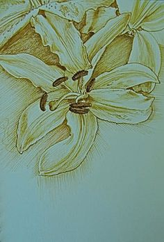 Lily by Luis Vargas Saavedra Pen and ink