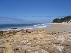 east london south africa - Google Search