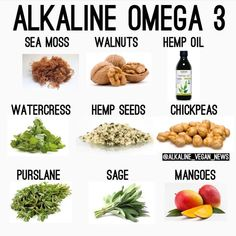 """Alkaline Vegan News on Instagram: """"Hope this helps some of you, someone had this question today. ▶️ ⭐️Purslane has the highest level of alpha-linolenic which is an omega 3…"""" Tomato Nutrition, Nutrition Tips, Health And Nutrition, Human Nutrition, Nutrition Quotes, Nutrition Store, Health Diet, Alkaline Diet Recipes, Healthy Recipes"""