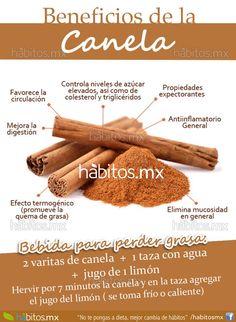 #hábitos.mx Canela
