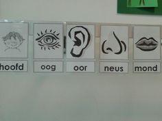 Een aantal voorbeelden van woordkaarten bij kern 2, opgehangen bij de doktershoek