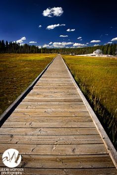 Boardwalk at Upper Geyser Basin of Yellowstone National Park.  Prints are available for purchase by clicking on the image.  Photo by Abbie Warnock