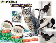 【楽天市場】愛猫トイレ革命!?キャット・トイレ・トレーニング・キット:ペットこだわりショップ