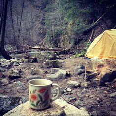 coffee+beauty+camping=peace plus I love the vintage flower coffee cup