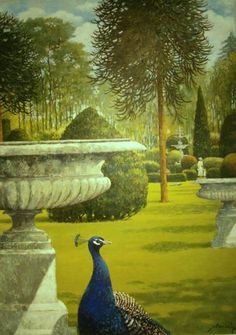 Urns,peacocks And Monkey Puzzles | John Noott Galleries