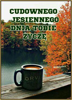 Humor, Polish, Good Morning, Night