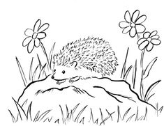 Awesome Hedgehog Coloring Pages 83 In Free Coloring Kids with Hedgehog Coloring Pages