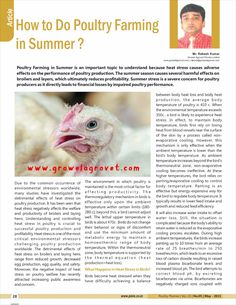 How To Do Poultry Farming in Summer? The article written by Mr. Rakesh Kumar, Marketing Director, Growel Agrovet Private Limited, has been published in Poultry Planner magazine, May – 2021 edition Poultry Farming, Heat Stress, Stress Causes, Article Writing, Magazine, Marketing, Summer, Summer Time, Raising Chickens