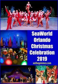 SeaWorld Orlando Christmas Celebration 2019 features new and returning holiday favorites!