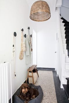 home with interior stylist fleur holl Big round hooks on wall and super skinny bench for putting on shoes. at home with interior stylist fleur holl. Entry Stairs, Entry Hallway, Hallway Ideas, Entrance Ideas, Entrance Decor, Entryway Bench, Hallway Inspiration, Interior Inspiration, Decoration Hall
