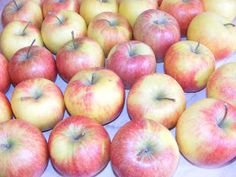Mere Apple, Fruit, Food, Syrup, Canning, The Sea, Fine Dining, Apple Fruit, Essen