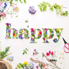 All Flowers, Dried Flowers, Kids Lighting, Morning Wish, Simple Words, Petunias, Sprinkles, Happy, Cottage