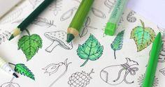 floresta encantada para colorir - Pesquisa Google