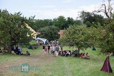 Impressionen vom Buena Onda Festival 2014 in Spielfeld - www.music-news.at Felder, Dolores Park, News, Music, Travel, Good Vibes, Musica, Musik, Viajes