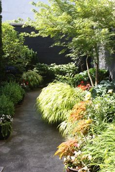The Outsider: Gardening on Concrete in Williamsburg