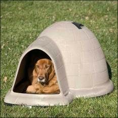 Petmate-Indigo-Dog-House-with-Microban  #doghouse #dog #doglover #animal #pet #pethouse