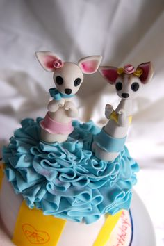 Gay Chihuahua cake, dress your doggy!
