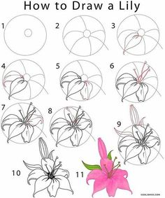 drawing lessons for kids ; drawing lessons for beginners ; drawing lessons step by step ; drawing lessons for adults ; drawing lessons for kids teaching ; Flower Drawing Tutorials, Flower Sketches, Art Tutorials, Drawing Flowers, Painting Tutorials, Painting Flowers, Easy Rose Drawing, Lilly Flower Drawing, Art Flowers