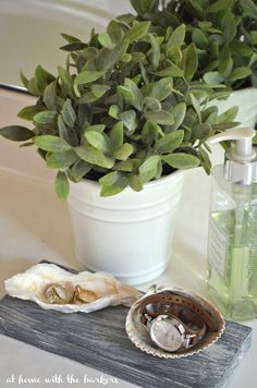 DIY Seashell Jewelry Dish with Faux Driftwood effect