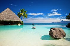 Cestovanie je naša vášeň! Nájdite si najlepšie hotely! Swiss Halley #swisshalley