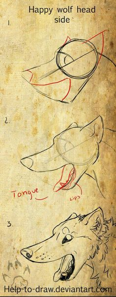 Drawing Tips Happy canine side view - Drawing Skills, Drawing Techniques, Drawing Tips, Drawing Ideas, Drawing Stuff, Pencil Art Drawings, Art Drawings Sketches, Easy Drawings, Animal Sketches