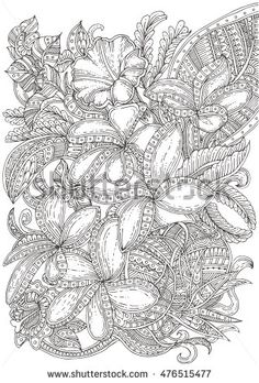 Thailand Flowers Hand Drawn Floral Pattern In Black And White Adult Coloring Book