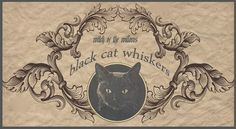"""""""Black Cat Whiskers""""                                                       …"""