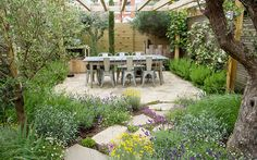garden design richmond, mediterranian plants | arun landscapes