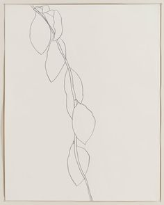 Ellsworth Kelly Lemon branch 1964