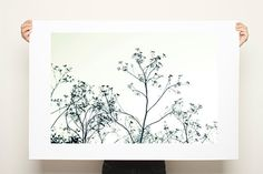 Large minimalist poster of tree, Canvas Print up to 40X28, huge wall decor, tree print, black and white